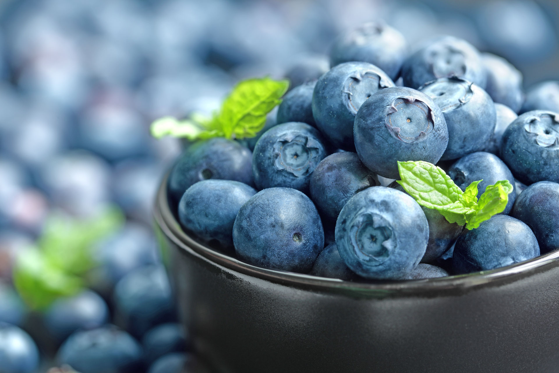 Blueberry Month at The Storage Inn