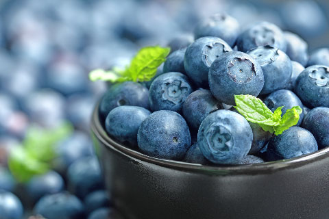 The Storage Inn blog's latest post is about National Blueberry Month and Hammonton NJ